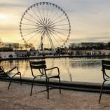 Jardin des tuileries_Paris