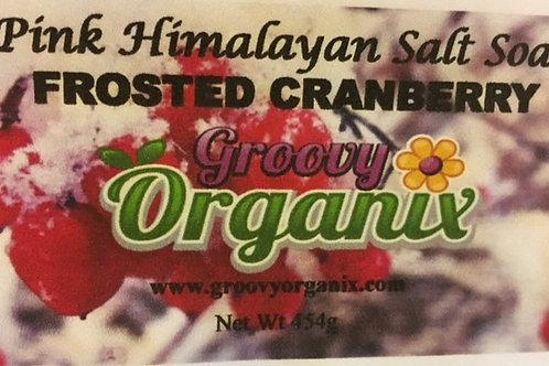 Salt Soak -Frosted Cranberry