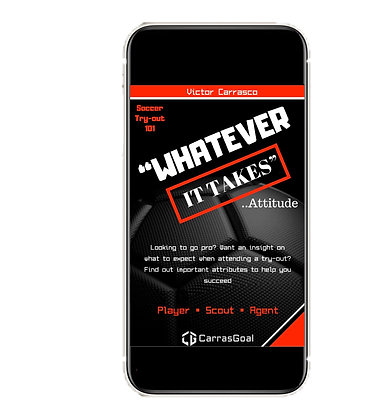 Whatever It Takes Attitude - Audio & Ebook