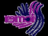 logo REMOISSS.png