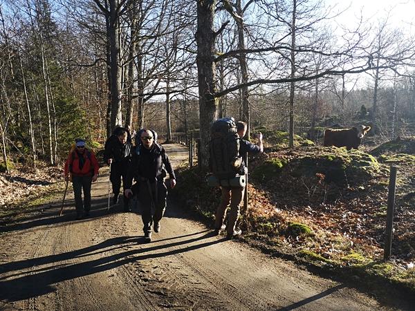 LifeTrip020Szkolenie Survivalowe Szwecja