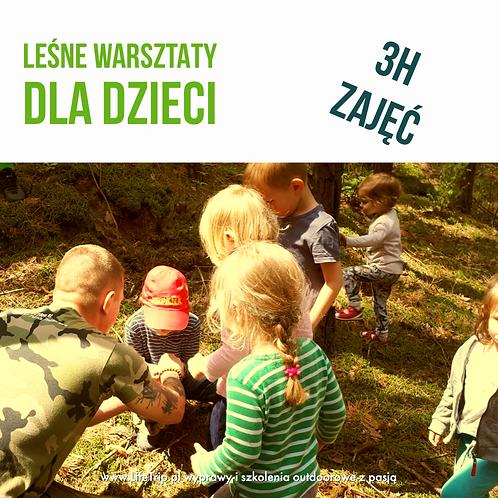 Jedne zajęcia - Leśne Warsztaty Dla Dzieci