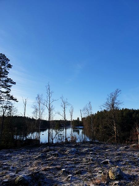 LifeTrip052Szkolenie Survivalowe Szwecja