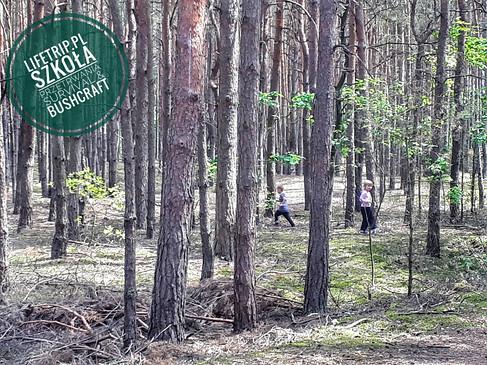 Ojciec z Dzieckiem - pełen las