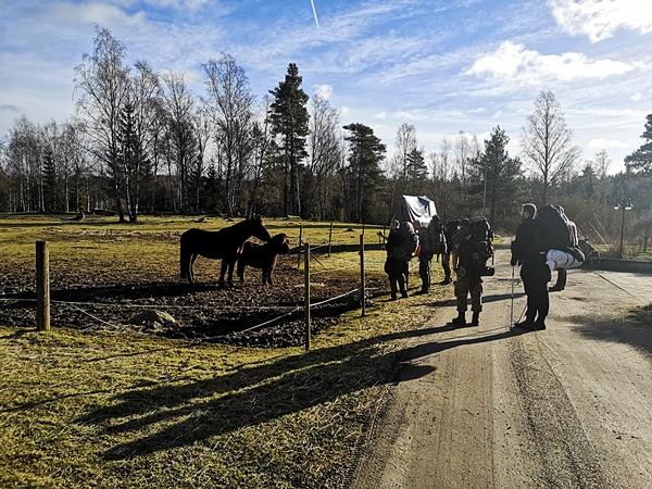LifeTrip021Szkolenie Survivalowe Szwecja