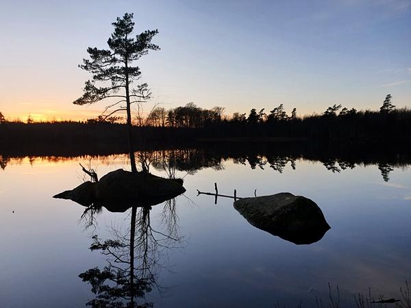 LifeTrip057Szkolenie Survivalowe Szwecja