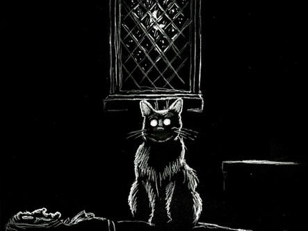 Spooky Spotlight: Supernatural Cats