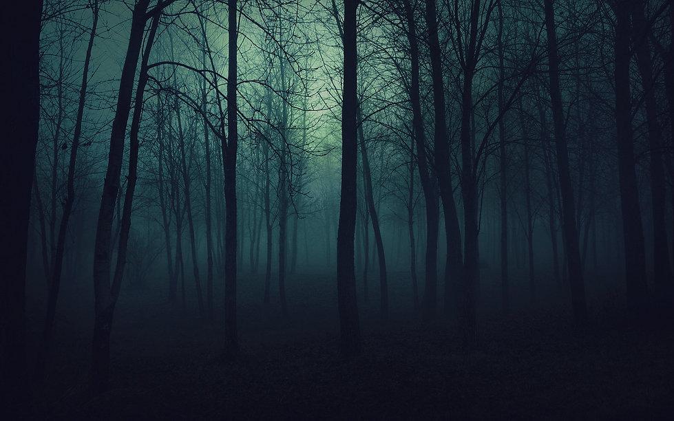 Dark, spooky forest