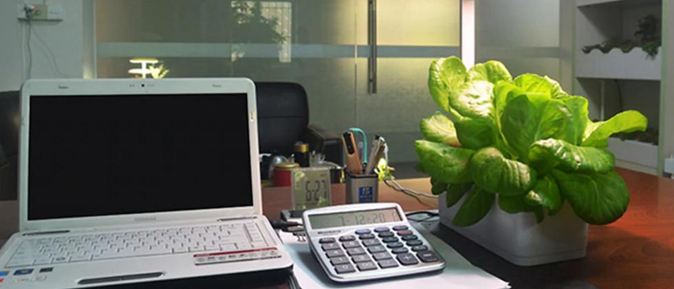 Greeny desk - Boîte de culture hydroponique