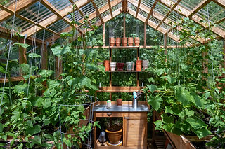 spexor_Garden_shed.jpg