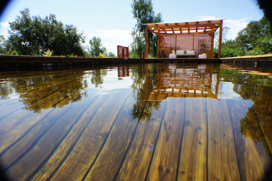 bio-pool-tech-piscine