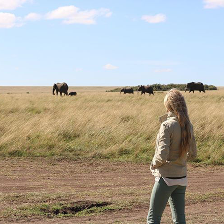 Our African Safari Honeymoon is a Must Do