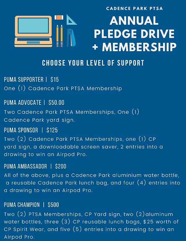 Pledge Drive Incentive Levels.png