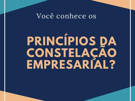 Principios da Constelação Empresarial