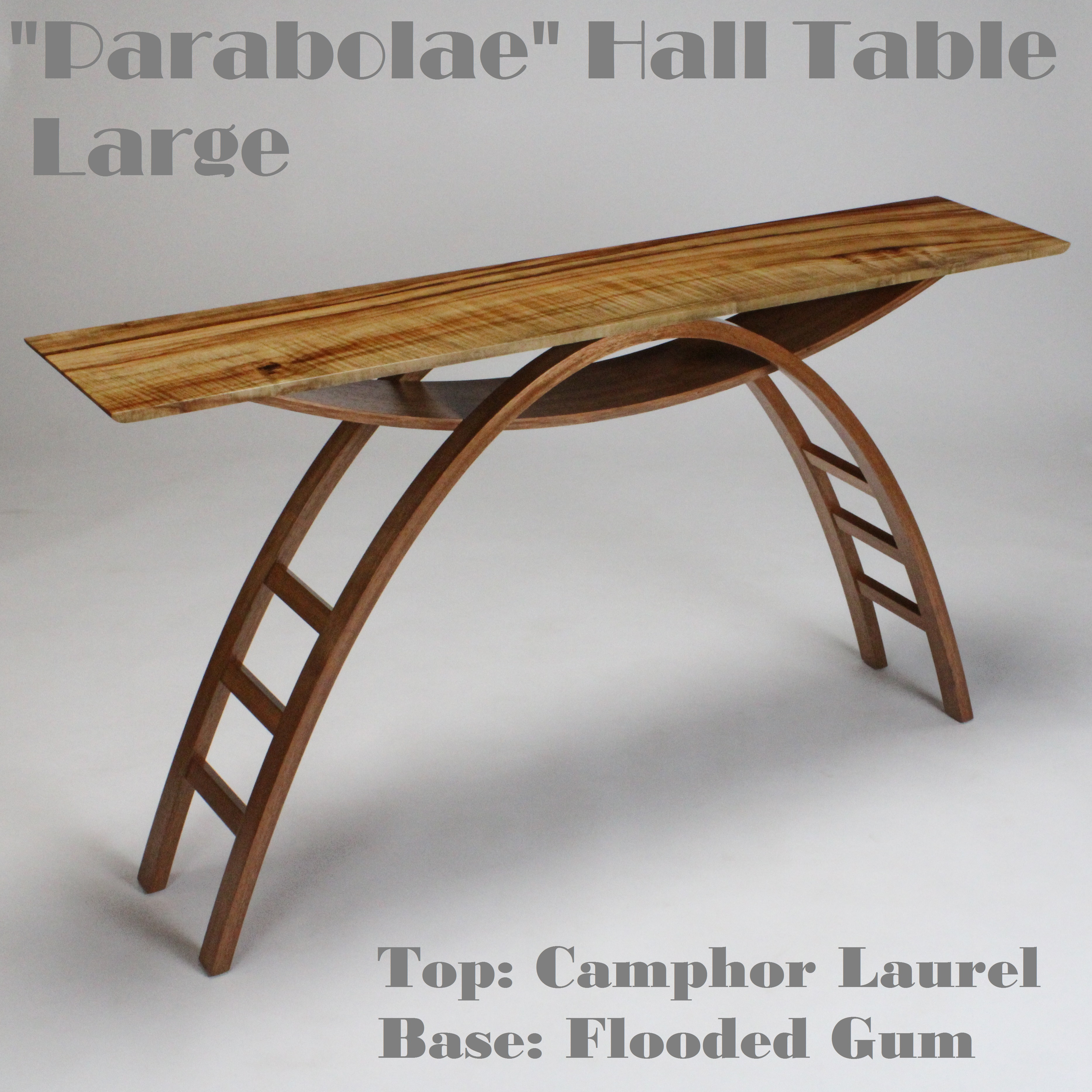 Parabolae 106 Hall Table Website 2