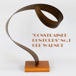 Constrained Contours 1