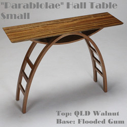 Parabolae 106 Hall Table Website 1