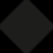 FINIX_BLACK.png
