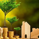 money-on-trees.jpg