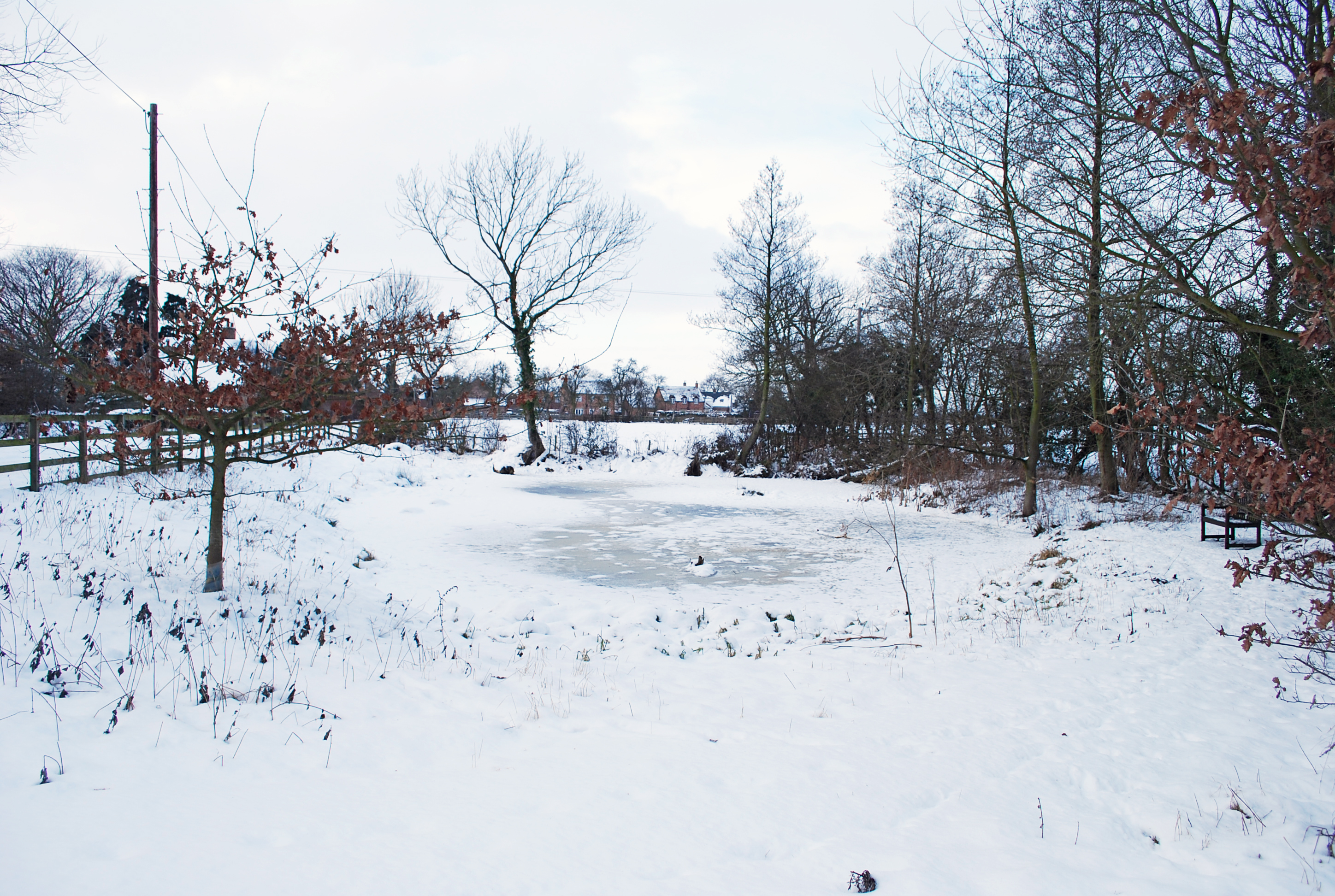 Hessay Pond, January 2010