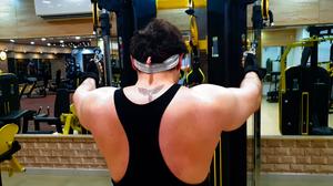 rear deltoid