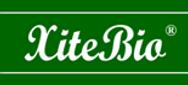 XiteBio-Technologies-Inc-logo-small.png