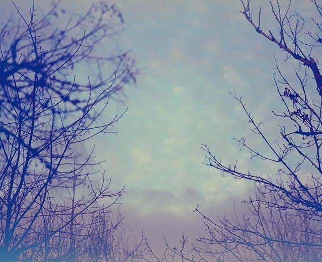 Skies in the upside down_#cameracoffeegu