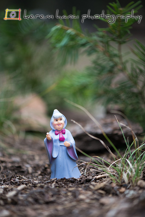 Fairy Godmother at Lassen Volcanic National Park