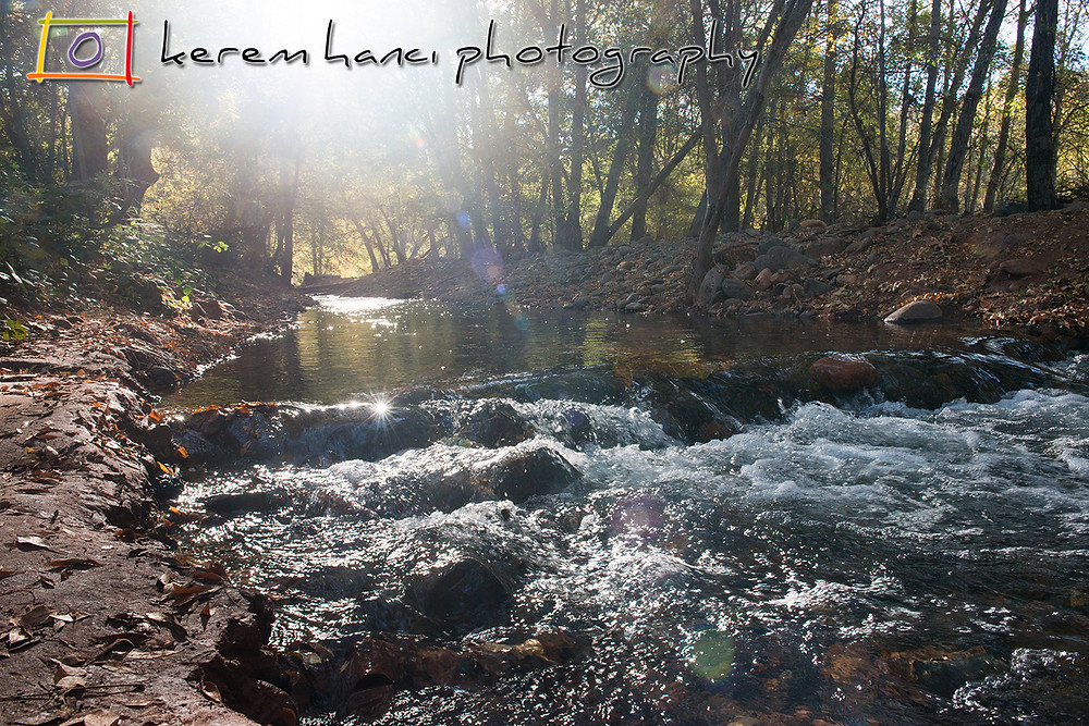 A serene hike by The Oak Creek on a gorgeous sunny morning