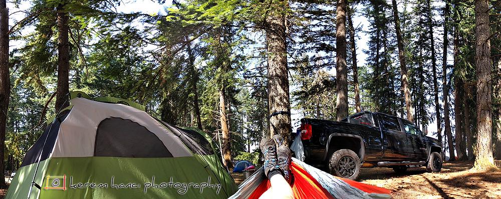 ElfenWood Campground in Veneta, OR