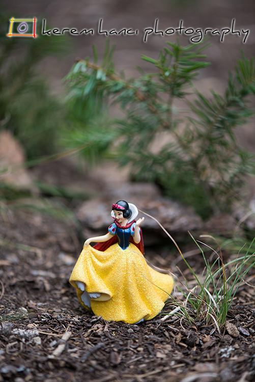 Snow White at Lassen Volcanic National Park