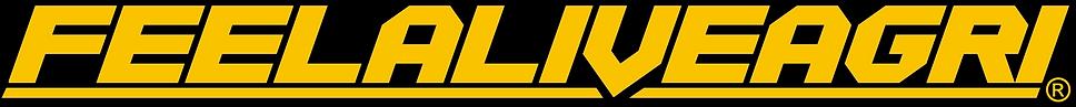 FAA 2019 logo registered.png