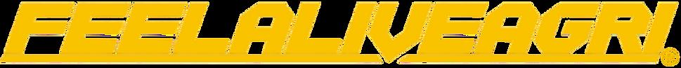 FAA_2019_logo_registered_copy_3-removebg