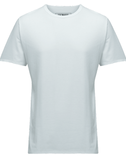 FW Mens Bamboo T-Shirt
