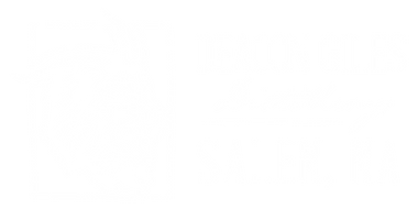 DG_logo_SALEM_horizontalWHITE_edited.png