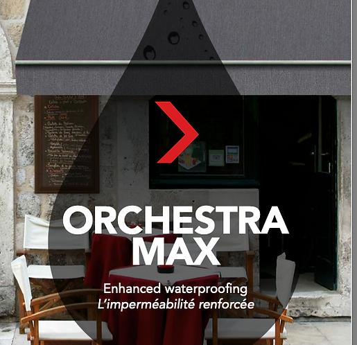 Toile Dickson Orchestra MAX