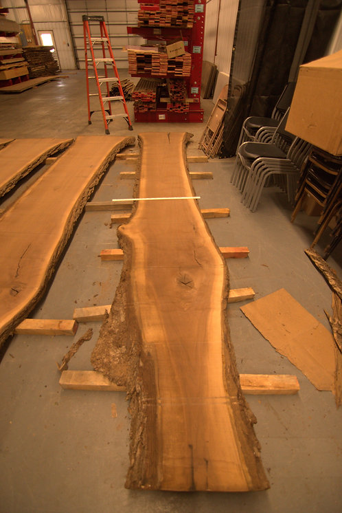 "Walnut Slab 15' 6"" #1"