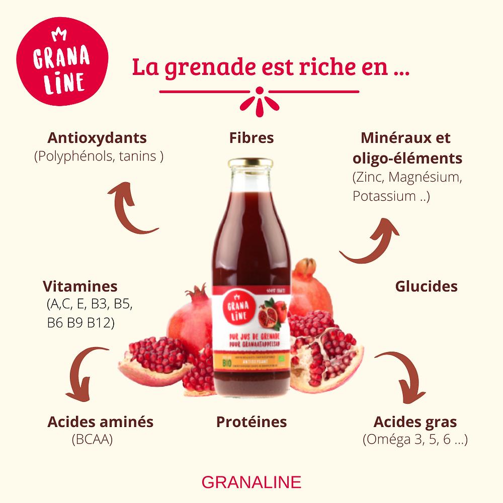 La grenade est riche en antioxydants, vitamines, fibres, minéraux, oligo-éléments, glucides, acides aminés, protéines et acides gras.