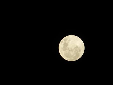 Du  12 au 19 novembre - Troisième Quartier de la Lune en Taureau: L'envie de fusionner deviendra plu