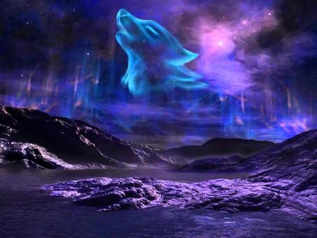 Du 28 janvier au 3 février 2021 - Troisième Quartier de la Lune en Lion - Braises fumantes