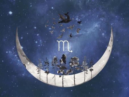 15 novembre 2020 - Journée de la Nouvelle Lune en Scorpion