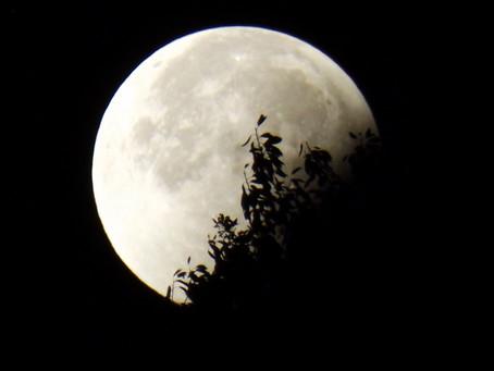 16 juillet 2019 - Éclipse Lunaire Partielle en Capricorne: La responsabilité s'arrête ici!
