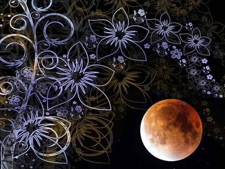 27 février 2021 - Pleine Lune en Vierge