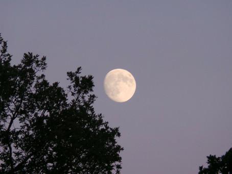 Du 15 au 23 août - Troisième Quartier de la Lune en Verseau : L'image planétaire complexe brosse tou