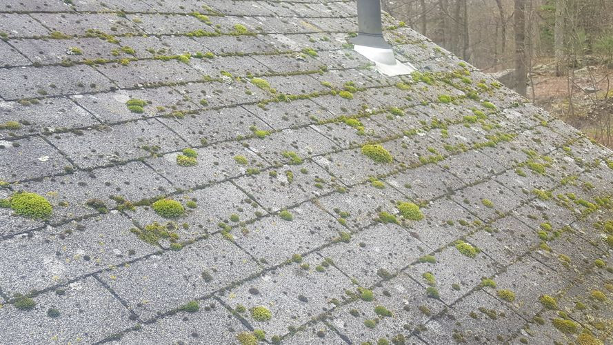 Ugly roof that has mold, and moss growing on it. Matthew Stewart Real Estate Team | Roseville | Granite Bay | Folsom | Auburn