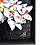 Thumbnail: White Butterfly   Fred Meurice