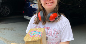 Lindsay Holcombe is Serving the IDD Community one Birdhouse at a Time