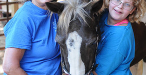 Resource of the Week: Horses for Hope