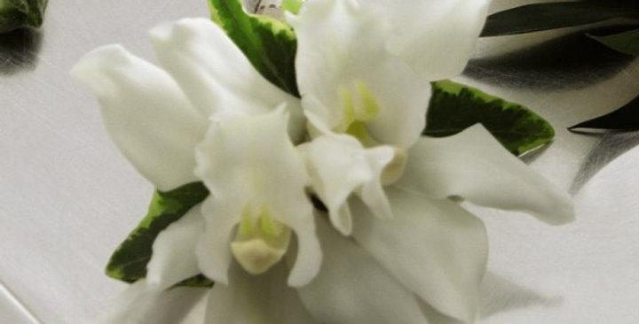 The FTD® White Mini Cymbidium Boutonniere