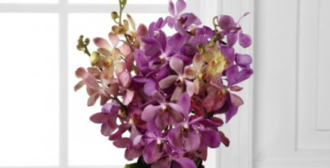 C19-4860 The FTD® Irresistible Orchid™ Bouquet